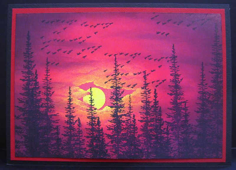 Cctwilight