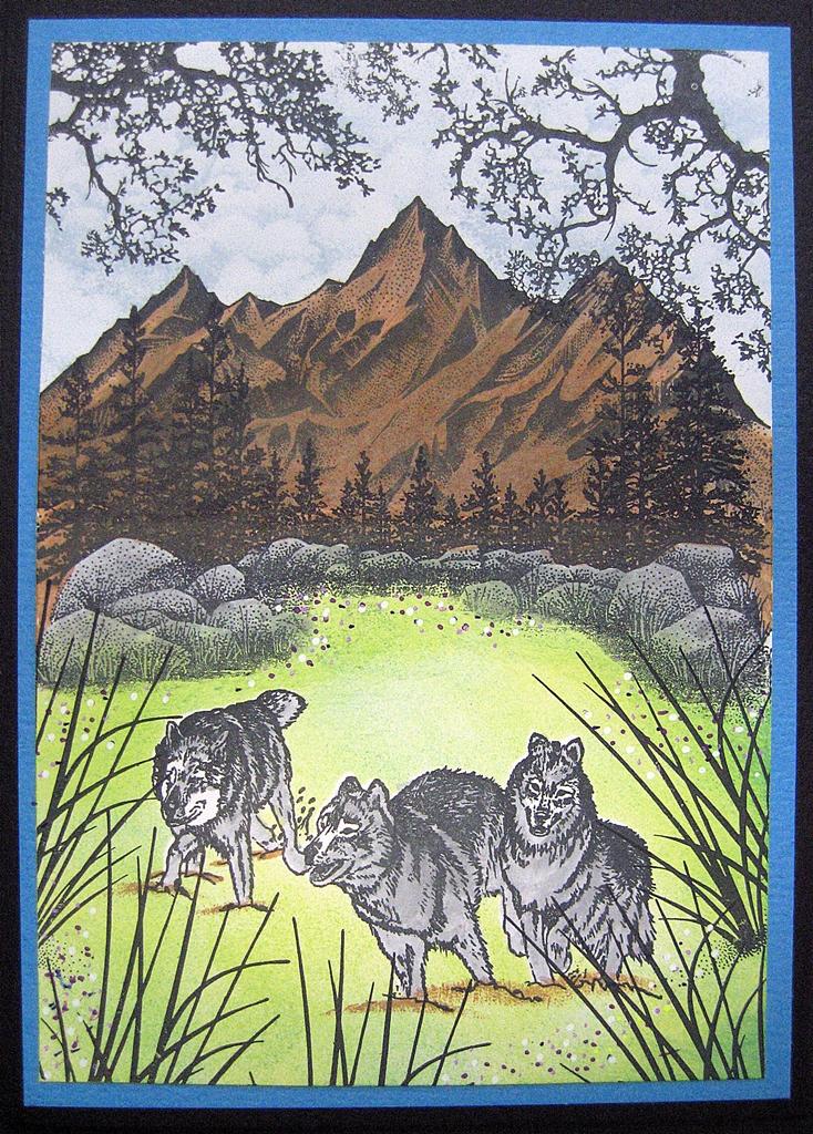 Ccwolves